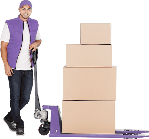Logistics Company in Dubai | Storage & Warehouse | Triburg